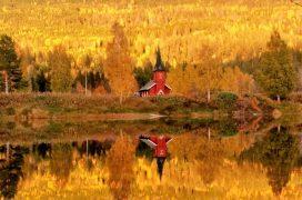 Høstkonserter med Tone Amundsen Stokland